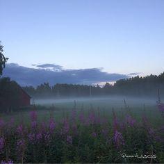 Iltausva . . #usva #maisema #kotimaassa #yleluonto #thebestoffinland #beautyofsuomi #finland_frames #visitingfinland #finnishmoments… A Moveable Feast, Koti, Summer Goals, Summer Memories, I Have A Dream, Spring Is Coming, Nature Photos, Mists, Nostalgia