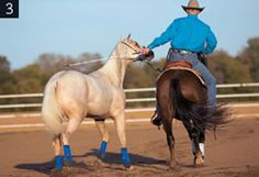 Clinton Anderson: Ponying Power – Learn How to Pony a Horse...need to teach Jazmyn this