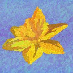 Daffodil falafel