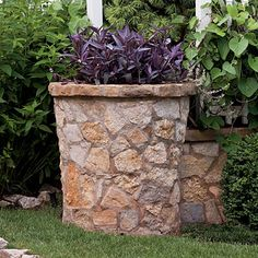 Spectacular Container Gardens: Purple Heart - Spectacular Container Gardening Ideas - Southern Living