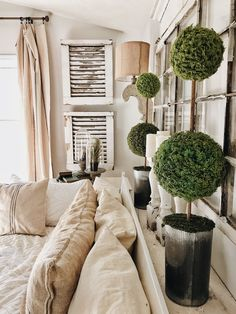 DIY Moss Ball Topiaries