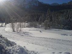 Traumhafte #Loipe in der glitzernden Sonne...