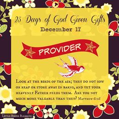 Little Birdie Blessings : 25 Days God Given Gifts ~ Day 17 ~ PROVIDER
