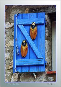 Cigales et volet bleu en Provence