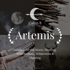 Artemis - Goddess of the Moon, Hunting, Wild Animals, Wilderness & Hunting - Percy Jackson Olympians Cabin 8 Greek Gods And Goddesses, Greek And Roman Mythology, Percy Jackson Cabins, Artemis Percy Jackson, Artemis Aesthetic, Percy Jackson Wallpaper, Hunter Of Artemis, Artemis Goddess, Artemisia Gentileschi