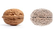 "Foods That Look Like Body Parts They're Good For ~The folds and wrinkles of a walnut bring to mind another human organ: the brain. The shape of the nut even approximates the body part, looking like it has left and right hemispheres. And it's no surprise walnuts are nicknamed ""brain food""    Read more: Food Nutrition Facts - Healthy Living Tips at WomansDay.com - Woman's Day"