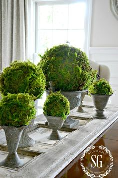 Faux moss balls can be so expensive. Why spend when you can save? Take a look at these DIY Textured Moss Balls. More DIY Fixer Upper Farmhouse Style Ideas on Frugal Coupon Living. Rustic Farmhouse, Farmhouse Style, Moss Garden, Succulents Garden, New Wall, The Fresh, Fresh Start, Fixer Upper, Diy Design