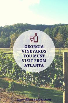 North Georgia Vineyards you MUST VISIT from Atlanta - Great Atlanta Day Trips! www.afriendafar.com Vacation Places, Places To Travel, Places To Visit, Camping Places, Vacation Trips, Weekend Trips, Day Trips, Atlanta Travel, Visit Atlanta