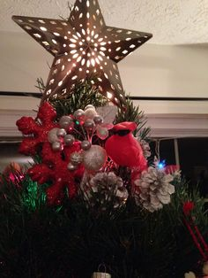 Tree topper- star-cardinal ( old world meanings) look it up