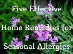 Home remedies for pollen allergy