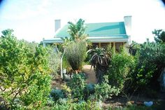 Relaxing, peaceful setting of the Garden Suite at Dune Ridge Country House. Located in a nature reserve near St Francis Bay, Eastern Cape, South Africa. www.duneridgestfrancisbay.co.za