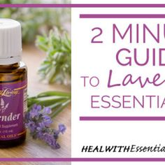 2 Minute Guide to Lavender Essential Oil