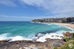 Que faire à Sydney ? Les visites incontournables - Evasions Gourmandes