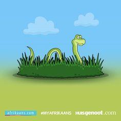 Daar is 'n slang in die gras