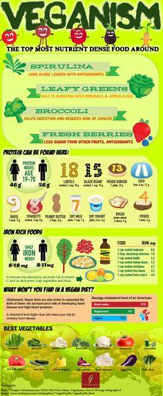 Veganism Infographic