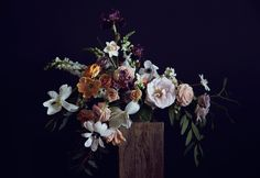 These arrangements were shot back in the Spring, right when P&P was just getting into gear.