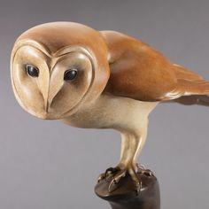Barn Owl by Nick Bibby