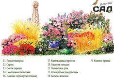 Создаем клумбу непрерывного цветения: фото, примеры и мастер-классы