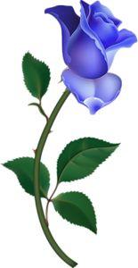 Large Pink Rose Bud Painting PNG Clipart by debora Flower Images, Flower Pictures, Flower Art, Watercolor Clipart, Decoupage, Illustration Blume, Image Clipart, Single Rose, Arte Floral