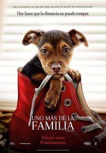 Peliculas Mas Vistas Cuevana 3 Todas Las Peliculas De Cuevana Part 4 A Dogs Purpose Full Movies Dogs