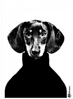 Buy art prints, poster art and fineartprint at Desenio! Discover our selection of abstract art prints and digital, graphical as well as finer illustrations. Our modern art prints goes perfectly with trendy home interiors. Arte Dachshund, Dachshund Love, Daschund, Desenio Posters, Gold Poster, Buy Posters Online, Prints Online, Arte Online, Black And White