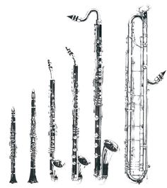 A huge picture of the clarinet family.  From left: E-flat clarinet, B-flat clarinet, basset horn, alto clarinet, bass clarinet, contrabass clarinet.