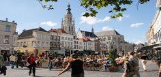 Descubriendo la zona de Holanda del Norte - http://www.absolut-amsterdam.com/descubriendo-la-zona-holanda-del-norte/