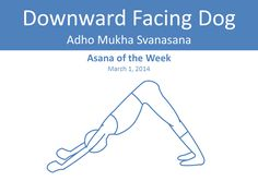 yoga asanas to lose belly, yoga asanas to lose weight, yoga asanas for flat stomach, yoga asanas to lose love handles, Naukasana, Boat Pose, Bhujangasana, Cobra Pose, Dhanurasana, Bow Pose, Salabhasana, Locust Pose, Virabhadrasana, Warrior Pose, Suryanamaskar variations, Ashwa Sanchalasana, Equestrian Pose, Kumbhakasana, Plank Pose, Adho Mukha Svanasana, Downward Facing Dog Pose, Gomukhasana, Cow Face Pose, Tadasana, Mountain Pose, yoga asanas, yoga for weight loss, jyo, pumpernickel pixie