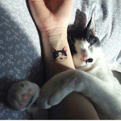 Imagem de cat, tattoo, and animal