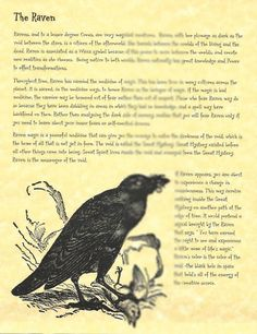 Book of Shadows page about The Raven picclick.com