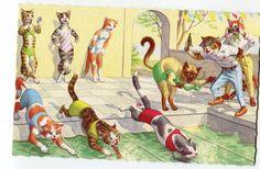 Mainzer cat postcard, swim meet  Mainzer dressed cats,  Postcard no. 4953 vintage postcard