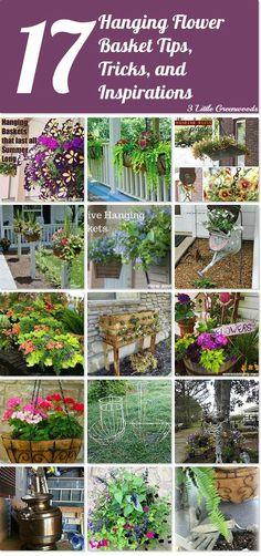 17 hanging flower basket tips, tricks and inspirations. http://www.hometalk.com/l/K0I