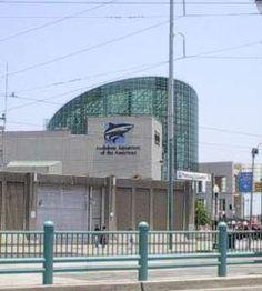 The Aquarium where Julian and Grace went