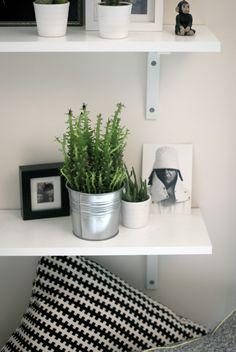 Urban Jungle Bloggers: Plant Shelfie 2 by @thechromologist