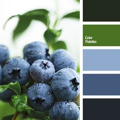 Color Palette #3729