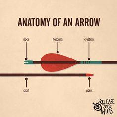 Anatomy of an arrow