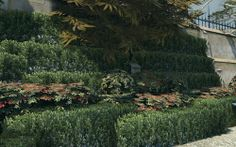 Some very interesting trees, amongst other garden foliage. Dishonored (2012)  from http://video-game-foliage.tumblr.com/post/68472923364/some-very-interesting-trees-amongst-other-garden