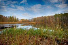 Kan tyckas konstigt att jag letar platser för bröllopsfotografering i mitten av november. Kanske för att jag vet att jag brukar springa på platser som denna. #linköping #sturefors #meralink #bestofscandinavia #igscandinavia #scandinavia #nordic #landscape #landscapelovers #ig_photooftheday #iglandscape #sverige #igsweden #swedenphotolovers #photolovers #igbest #ig_nature #landskap #hejöstergötland #linköpinglive