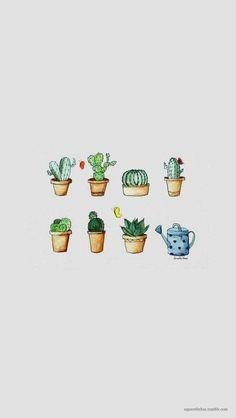 Lo se estoy obsesionada con los cactus