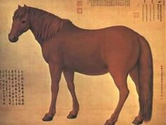 You'll Never Get a Chance to Ride These 10 Horse Breeds: Recently Extinct Horse #2 - The Ferghana