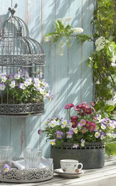 Shabby Chic mit Frühlingsblumen Whether tray, jardiniere or cage - Zinc containers are made for a pr Jardin Style Shabby Chic, Shabby Chic Decor, Tall Outdoor Planters, Hanging Planters, Garden Cottage, Garden Pots, Paint Your House, Flower Planters, Spring Garden