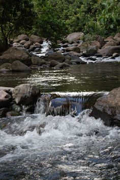 Have you ever been to Iao Valley?  #maui, Hawaii What was your favorite thing about it? www.menehunemaps.com