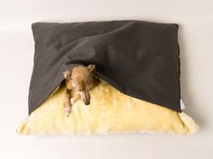Perfect for dogs that love to sleep under blankets
