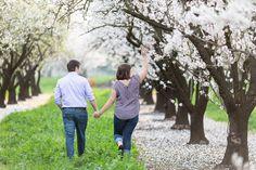 Chico Almond Blossom TréCreative Engagement Photographer  http://trecreative.com/