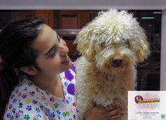 Lorena y Mía #PDAE #Peluquería Canina Vivancos Animals, Animales, Animaux, Animal, Animais