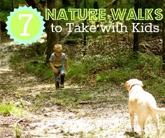 7 Nature Walks to Take with Kids from Our Montessori Home