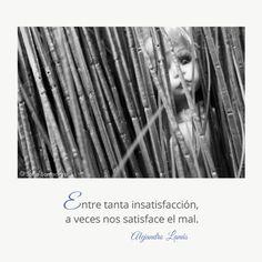 Entre tanta insatisfacción, a veces nos satisface el mal. #Umbrales #AlejandroLanus #Aforismos Optimism, Love Of My Life, Writers