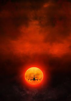 Fireflight - A big big thanks for visit my gallery !!!!!