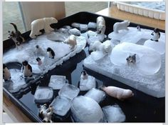 Next time it's hot, freeze toys in ice and watch melt