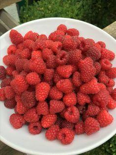 Delicious homegrown raspberries Raspberries, Fruit, Food, Meal, The Fruit, Eten, Meals, Raspberry